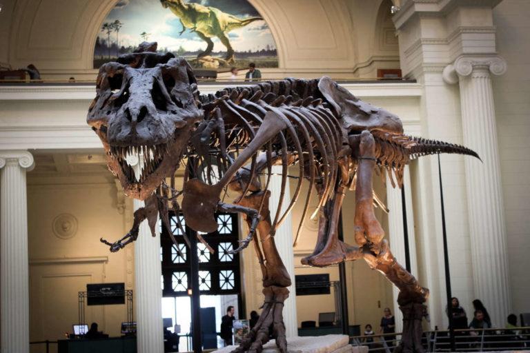 Découvrez les collections des musées de Chicago lors de votre voyage